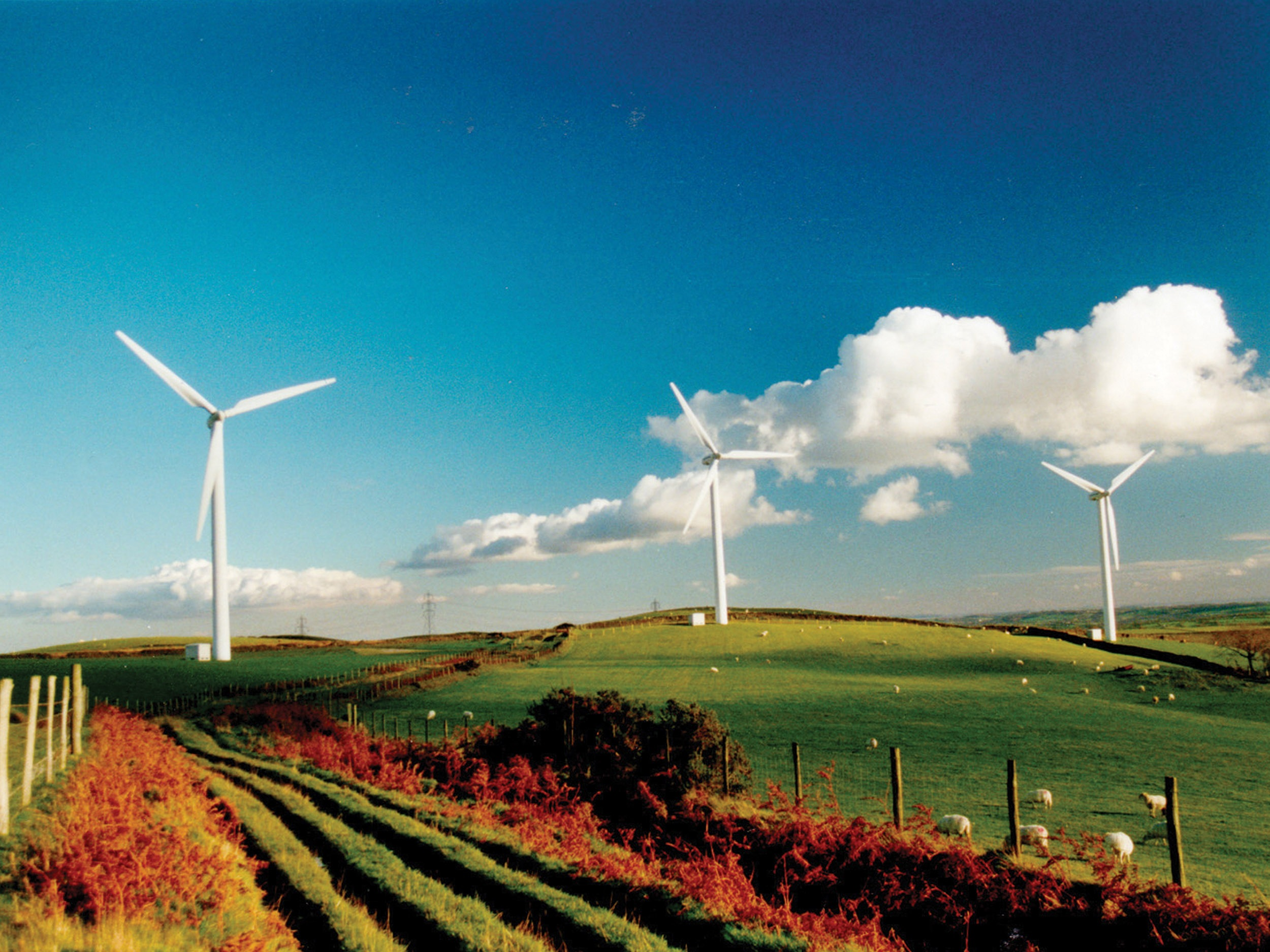 Clean-Green-Energy1.jpg